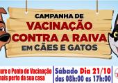 VÍDEO - Campanha de vacina para cães e gatos será neste sábado 21