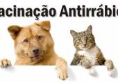 Campanha de vacina contra Raiva para cães e gatos será neste sábado dia 22