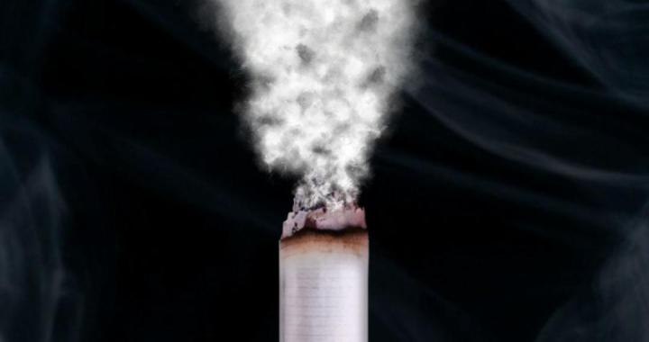 33 ANOS DO DIA NACIONAL DE COMBATE AO FUMO