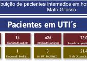 INFORME: TAXA DE OCUPAÇÃO DE LEITOS ADULTOS EM MATO GROSSO 01-07-21