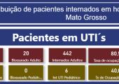 INFORME: TAXA DE OCUPAÇÃO DE LEITOS ADULTOS EM MATO GROSSO - 29-07-21